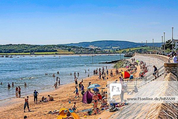 Strand Ufer Devon