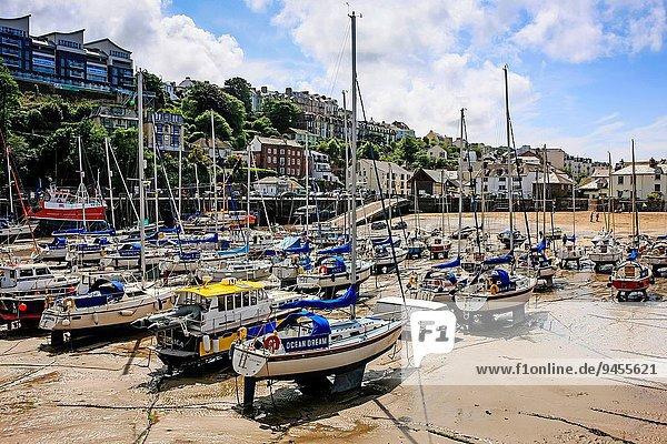 Ilfracombe Harbour in Devon.
