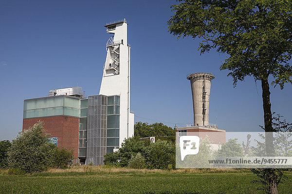 Fördergerüst  Consol-Park  ehemalige Zeche Consolidation  Gelsenkirchen  Ruhrgebiet  Nordrhein-Westfalen  Deutschland  Europa