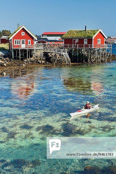 Wasser Schönheit Norwegen Insel Kajak Lofoten