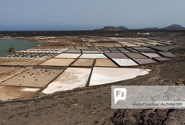Sea salt production  salt pans  Salinas de Janubio  Lanzarote  Canary Islands  Spain  Europe