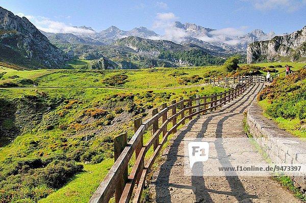 Nationalpark See Zimmer Europa Spanien