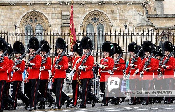 aufmachen Großbritannien London Hauptstadt Parlamentsgebäude Nostalgie Wachmann Unabhängigkeitstag Welsh Corgi Welsh Corgis England Juni marschieren