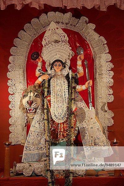 stehend Löwe Panthera leo 4 Fest festlich Wohnhaus fahren halten Wort Pfeil 3 Muschel Festival Zeichnung Hinduismus Puja Gott Göttin Indien Westbengalen