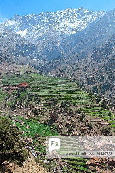 Berg Landschaft Tal Marokko