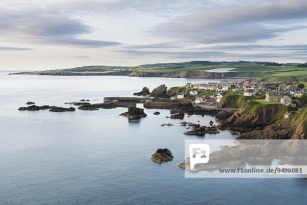 Fischerdorf St Abbs an der Ostküste  Stadt Eyemouth hinten links  Berwickshire  Schottland  Großbritannien  Europa