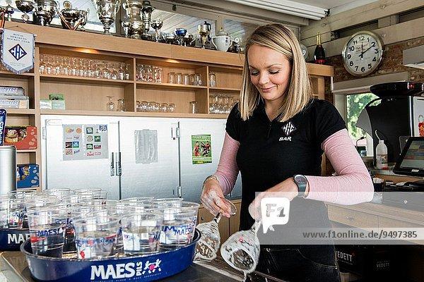 hinter Attraktivität Frau Reinigung waschen arbeiten jung polieren Bier Belgien polnisch