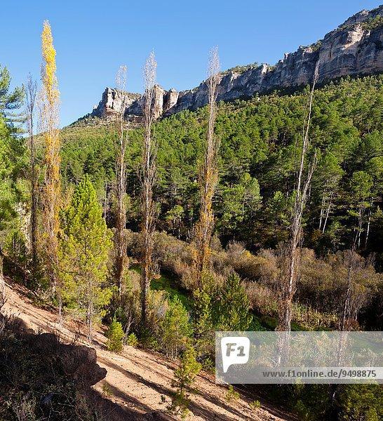 hoch oben Europa Landschaft Schlucht Guadalajara Spanien