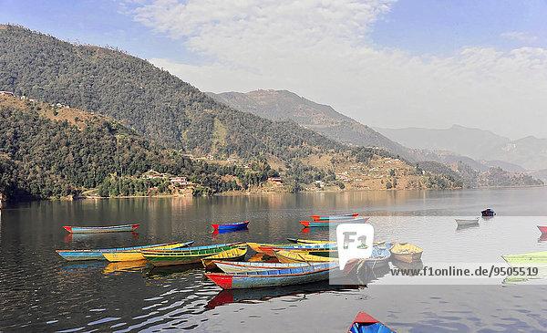 Ruderboote auf dem Phewa-See  Pokhara  Nepal  Asien
