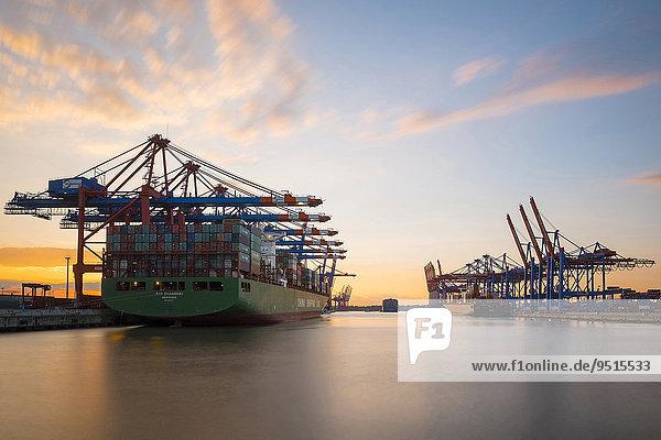 Frachtschiffe werden am Eurokai und Burchardkai im Abendrot beladen  Waltershofer Hafen  Hamburger Hafen  Hamburg  Deutschland  Europa