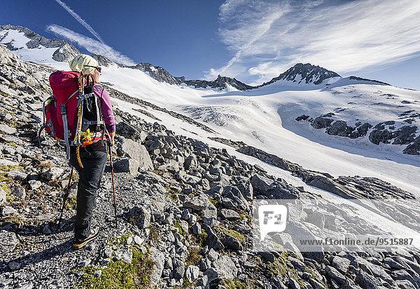 Bergsteiger beim Aufstieg zum Großen Möseler  hier auf dem Neveser Höhenweg  hinten der Turnerkamp  Lappach  Mühlwalder Tal  Tauferer Tal  Pustertal  Südtirol  Italien  Europa