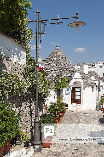 Straße mit Trulli  Trulli Distrikt  Alberobello  Apulien  Italien  Europa