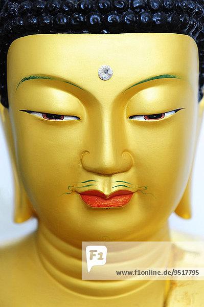Kopf einer goldenen Buddha-Skulptur aus Korea Kopf einer goldenen Buddha-Skulptur aus Korea