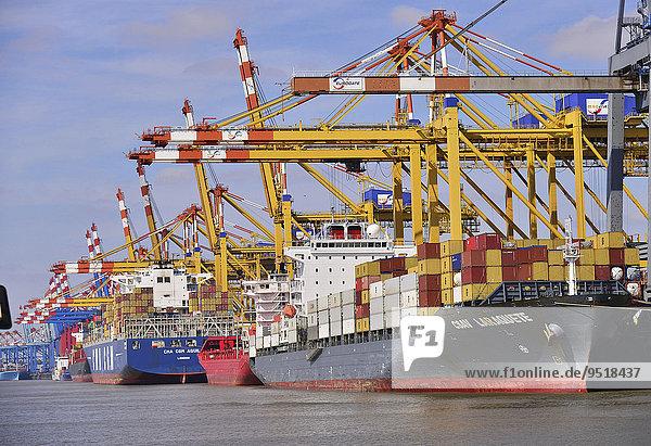 Containerschiffe und Portalkräne  Stromkaje  Wilhelm Kaisen-Terminal  Container-Terminal Bremerhaven  Bremerhaven  Bremen  Deutschland  Europa