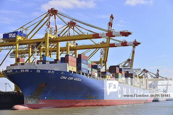 Containerschiff und Portalkräne  Stromkaje  Wilhelm Kaisen-Terminal  Container-Terminal Bremerhaven  Bremerhaven  Bremen  Deutschland  Europa
