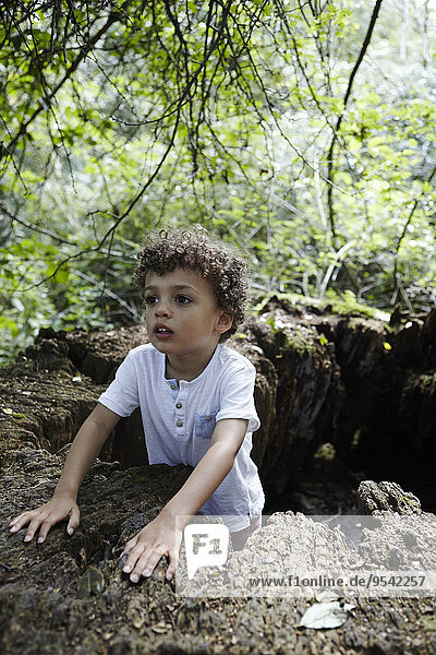 Boy in hole in forest
