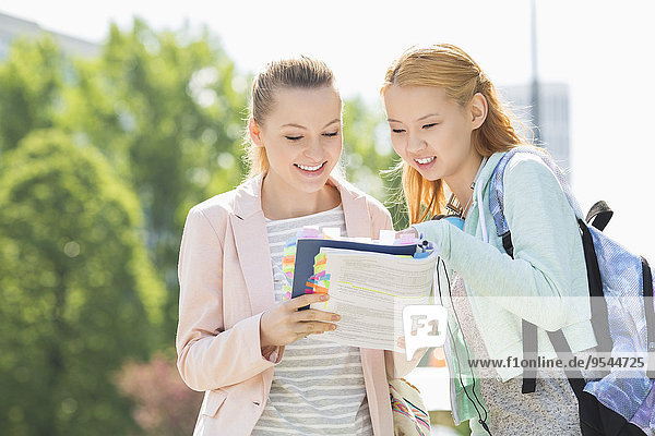 Fröhlichkeit Buch Student jung Campus Hochschule Taschenbuch vorlesen