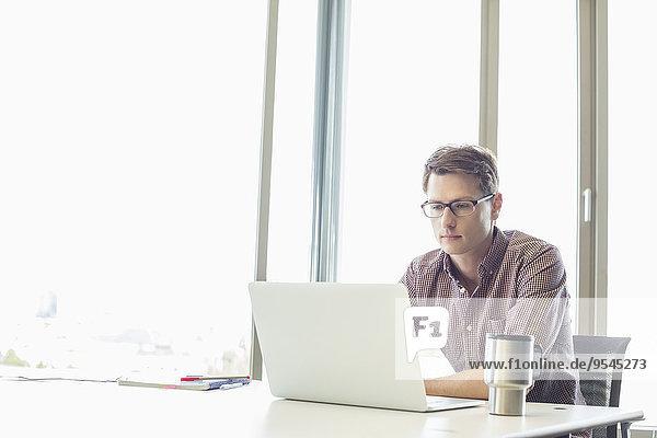 benutzen Schreibtisch reifer Erwachsene reife Erwachsene Notebook Geschäftsmann Kreativität Büro