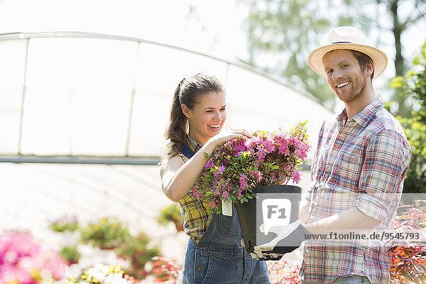 Außenaufnahme Fröhlichkeit Blume halten Gärtner Treibhaus