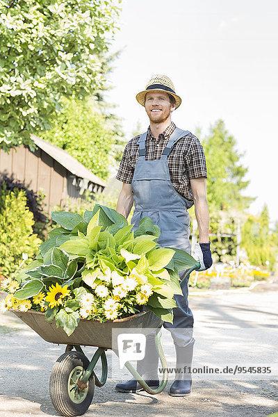 Ganzansicht schieben Pflanze Schubkarre Garten Gärtner