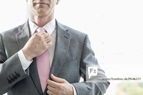 Geschäftsmann Mittlerer Ausschnitt berichtigen reifer Erwachsene reife Erwachsene Krawatte