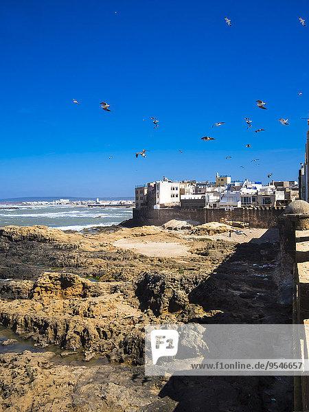 Morocco  Essaouira  Sqala de la Kasbah  sea wall of old town