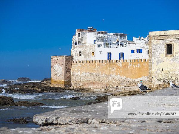 Marokko  Essaouira  Sqala de la Kasbah  Malecon