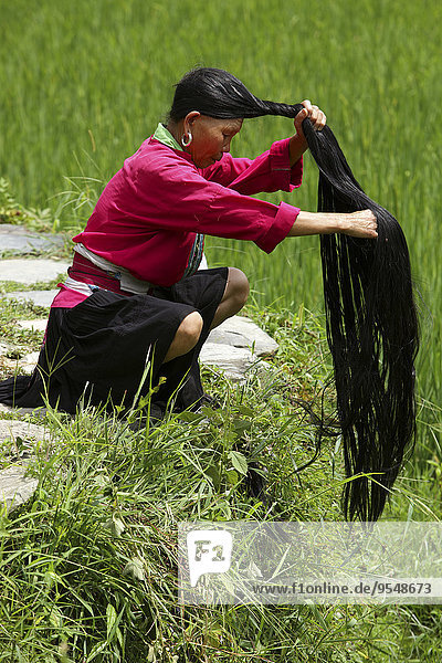 China  Guangxi  Ping'an  Yao woman braiding her long hair