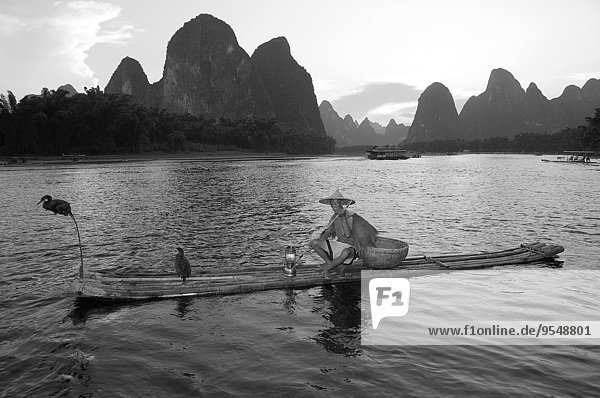 China  Guangxi  Xingping  cormorant fisherman on Li river