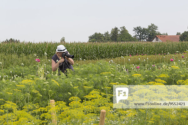 Frau fotografiert Blumen auf dem Feld