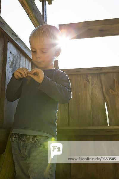 Kleiner Junge beim Plaudern im Baumhaus