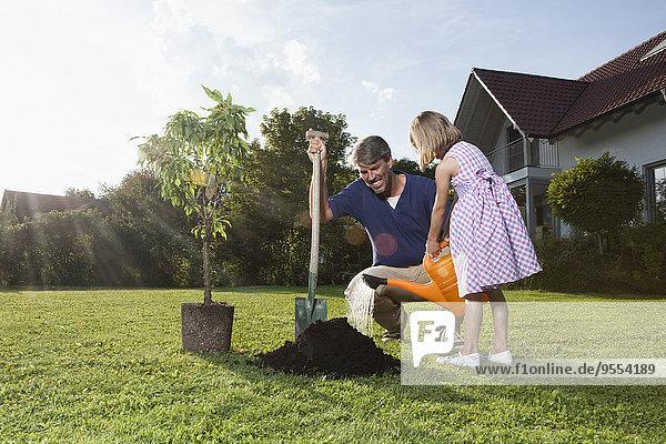 Vater und Tochter pflanzen Baum im Garten