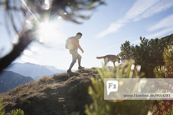 Österreich  Tirol  Unterberghorn  Wanderer mit Hund bei Sonnenaufgang