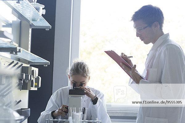 Junge Chemiker  die in einem chemischen Labor arbeiten