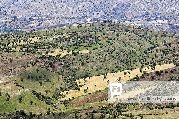 Türkei  Anatolien  Südostanatolien  Provinz Adiyaman  Kahta  Nationalpark Nemrut Dagi  Kulturlandschaft
