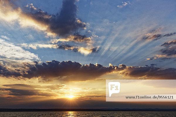 Österreich  Burgenland  Illmitz  Neusiedler See bei Sonnenuntergang