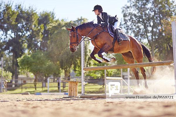 Junge Frau auf dem Pferd überquert Hindernis auf dem Parcours
