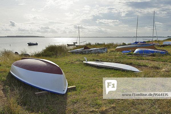 Strand Sommer Boot Dock Insel Baltikum Ostsee Baltisches Meer Deutschland Hiddensee Vitte Strand,Sommer,Boot,Dock,Insel,Baltikum,Ostsee,Baltisches Meer,Deutschland,Hiddensee,Vitte