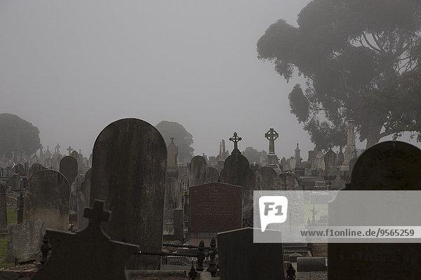 Grabsteine auf dem Friedhof gegen klaren Himmel  Melbourne  Victoria  Australien
