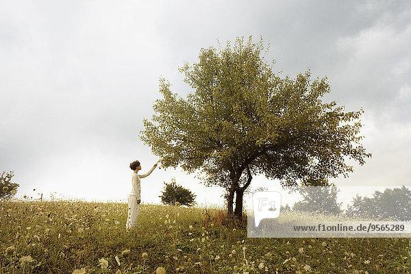 Seitenansicht der Frau beim Berühren der Blätter am Baum auf dem Feld