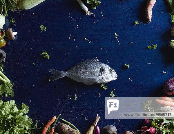 Direkt über dem Schuss Fisch inmitten von Gemüse auf blauem Tisch