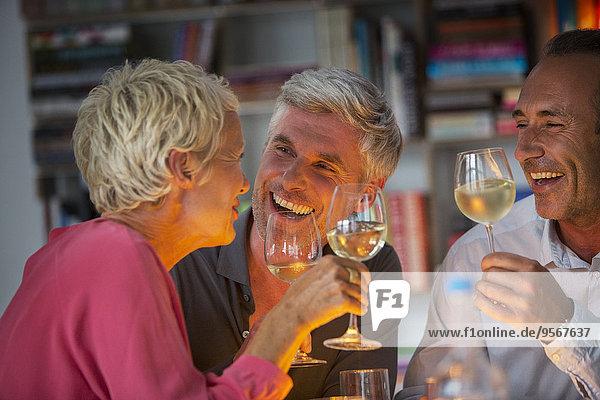 Ältere Freunde trinken Wein