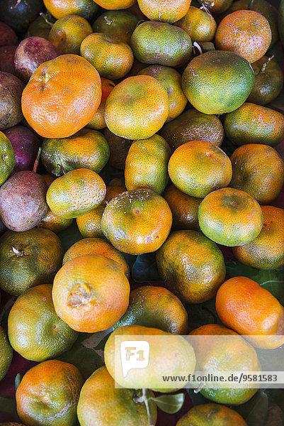 Frucht Wiedervereinigung Heiligtum Insel