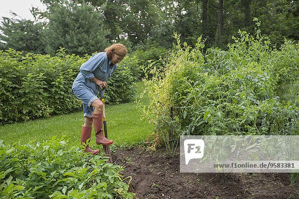 Older Caucasian woman working in garden