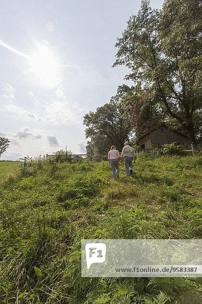 Europäer gehen Bauernhof Hof Höfe alt