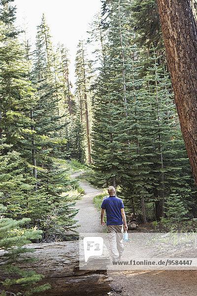 Mann folgen Wald wandern schmutzig