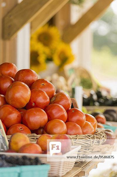 Produktion Landwirtin Markt