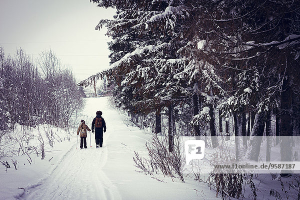 Europäer Menschlicher Vater Schnee Fernverkehrsstraße Skisport Tochter querfeldein Cross Country