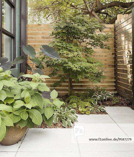 Terrasse Gebäude Landschaftsarchitektur Eigentumswohnung Veranda modern