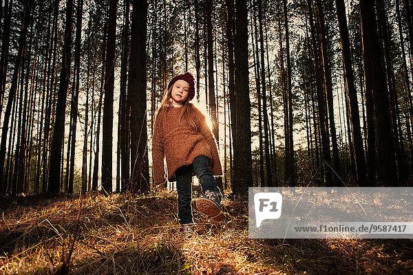 Europäer Wald Mädchen spielen Europäer,Wald,Mädchen,spielen